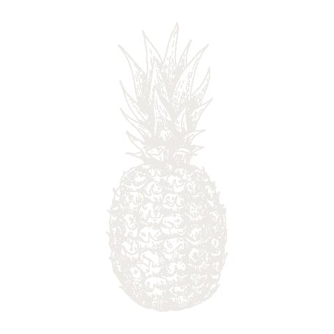 Pineapple  negative