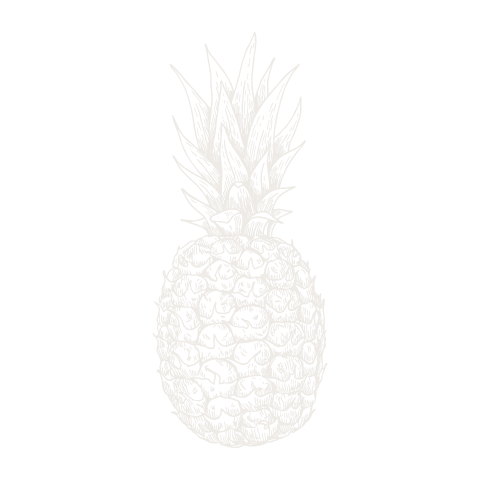 Pineapple  negative